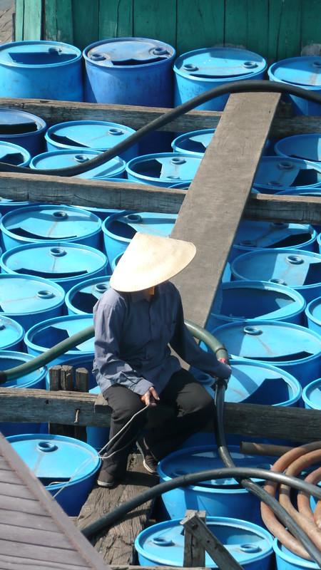 HanoiHalong Bay 231
