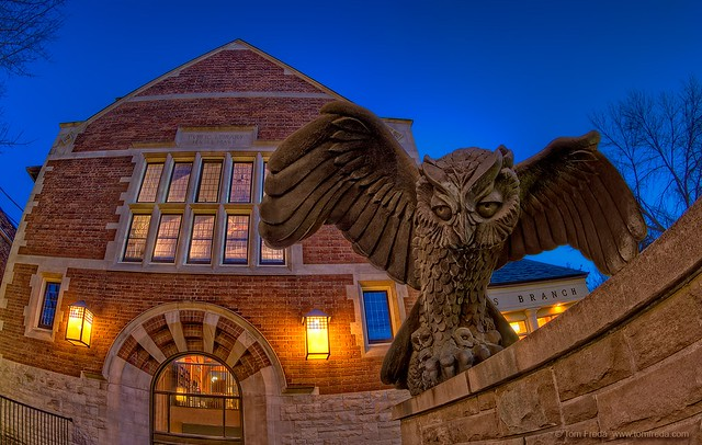 The Beaches Library Owl
