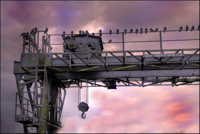Latchford,locks,Manchester,Liverpool,ship,canal,crane,Smith,Keighley,from,1957,10ton,load,10,tons,birds,sky,Grappenhall Village,Grappenhall,Cheshire,England,UK,village,Warrington,A50,A56,365days,HDR,high dynamic range,Hotpicks,hotpics,hot,pics,pix,picks,hotpix.freeserve.co.uk,merseyside,hotpix!