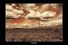 Golden Sky framed_resize by novika_juliephotography