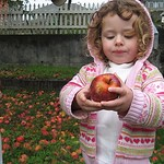 little audrey apple pickin with grandpa