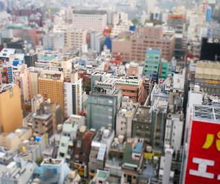 Shinjuku Prince hotel View Model 02-1109
