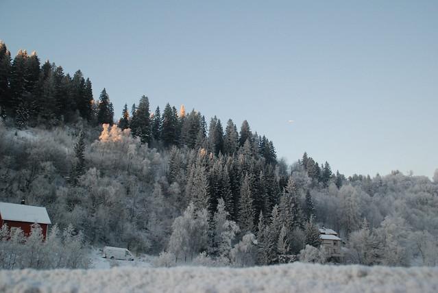 Winter Trondheim
