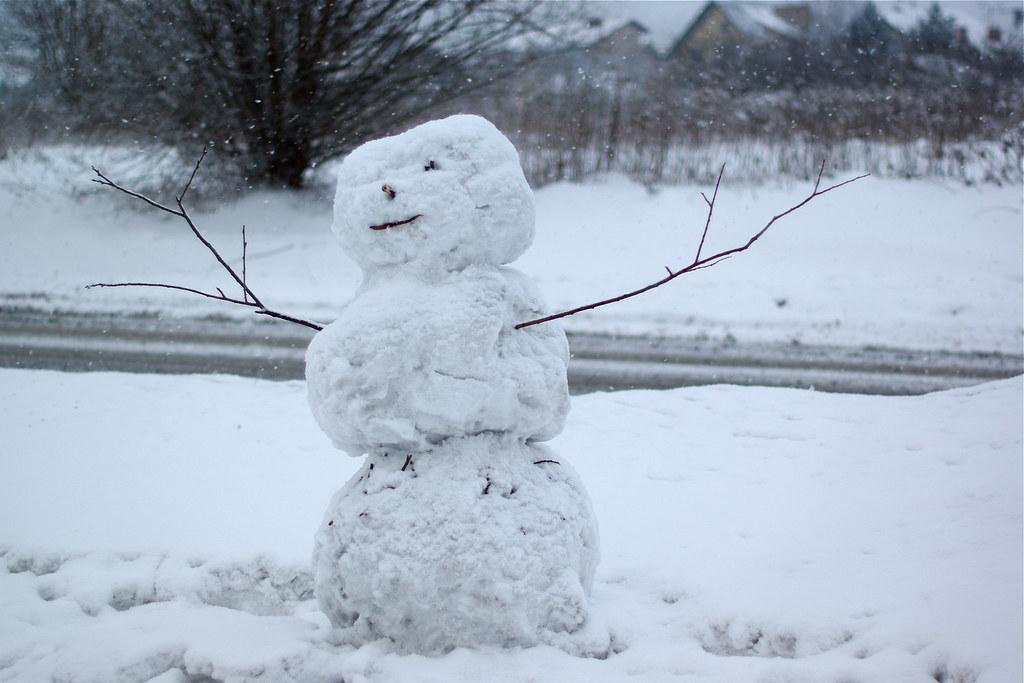34/365: Mr. Snowman