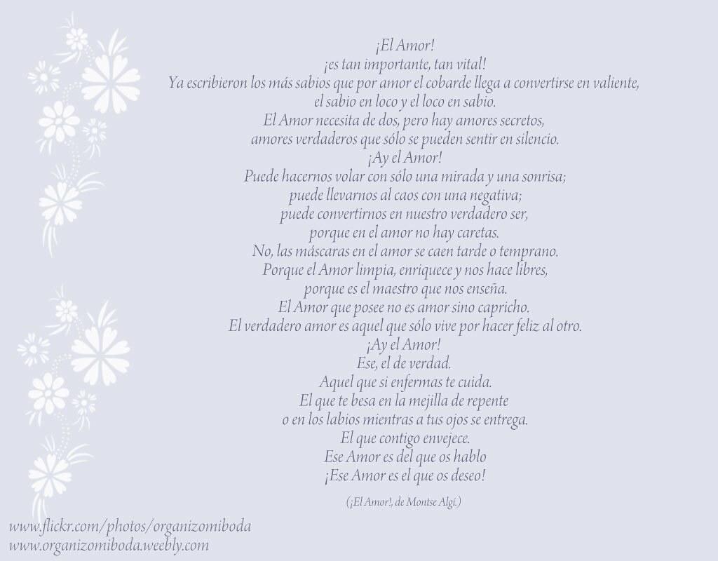 ¡El Amor! de Montse Algí