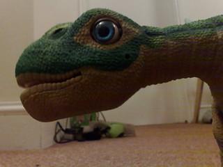 Pleo's Head