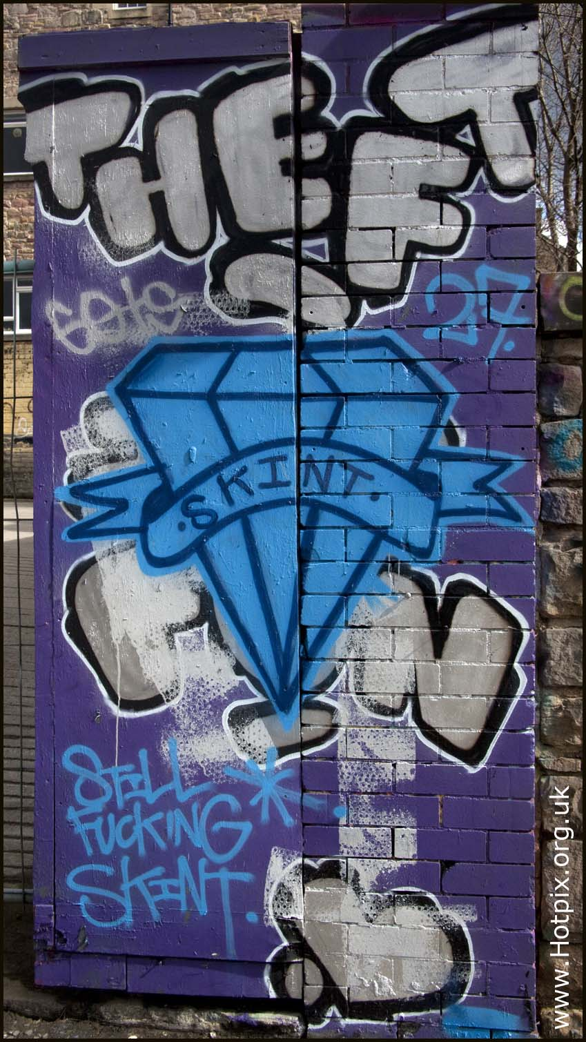 lothian,still,fucking,skint,graffitti,grafitti,graffiti,grafitto,street still,street,art,edinburgh,scotland,city,UK,united,kingdom,spray,paint,arty,artistic,arts,purple,blue,silver,disturbia,tourist,destination,scottish,escotia,NRSP,edinbrugh,hotpix!,Edinburg,edimburgh