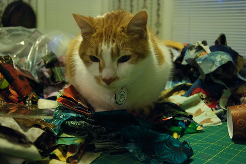 Tenzing gives the first few finished squares the Kitty Butt Seal of Approval. Behind him are the piles of fabric strips, sorted by color, that still haven't seen use yet. I'm starting to suspect they breed like rabbits.  Blog entry: domesticat.net/2010/03/accidental-quilt-top-tourist This quilt's page: domesticat.net/quilts/crayon-box