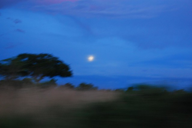 Moonrise, Murchison Fall National Park