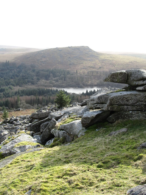 Lower Leather Tor, Sheeps tor background