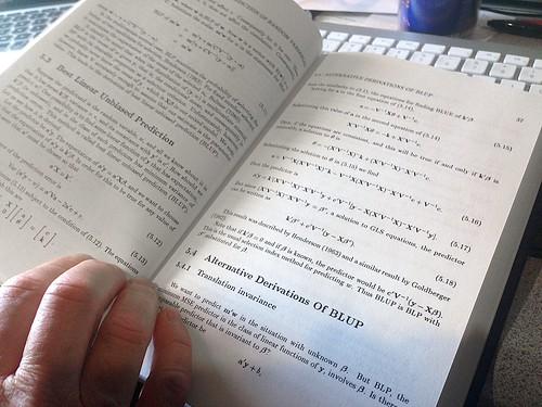 BLUP Math   by cogdogblog