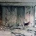 Concrete Sanatorium