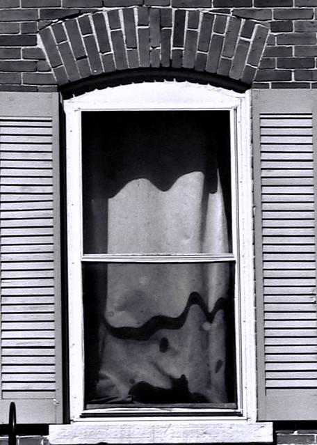 Black Cat In Window  /  Un chat noir regarde par la fenêtre