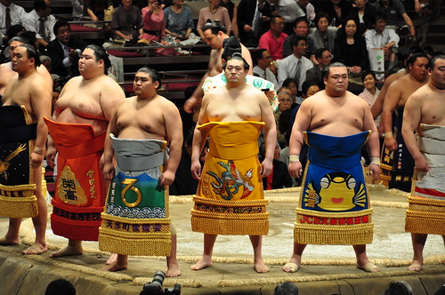 Sumo Line-up | by A Little Lam