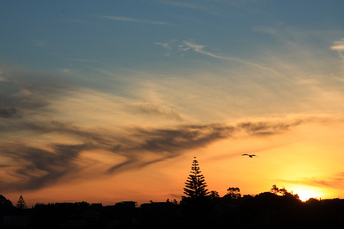 sunset newzealand sun silhouette northland nzl mangawhaiheads