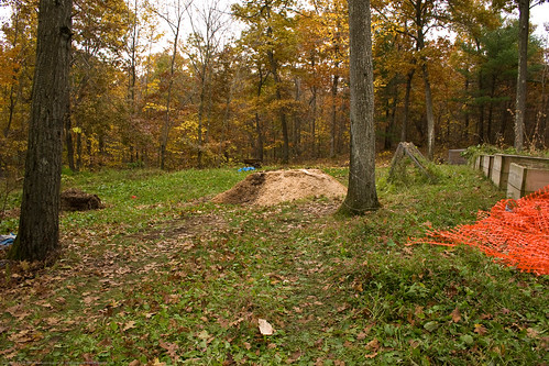 Permaculture: waste shavings, to use! | by nikaboyce