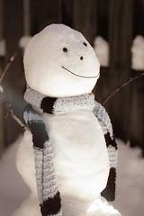 Snowman | by Emily Carlin