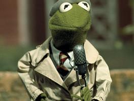 Gustavo 40 años de Reportero en Barrio Sésamo . Kermit 40 years of Reporter in Sesame Street