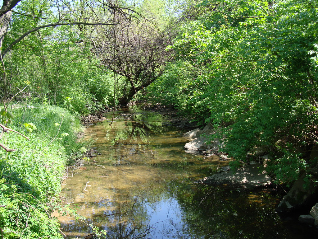 Bread and Cheese Creek between Plainfield Road and Old North Point Road after the 4/10/10 clean-up