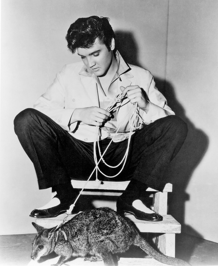 Evlis Presley.