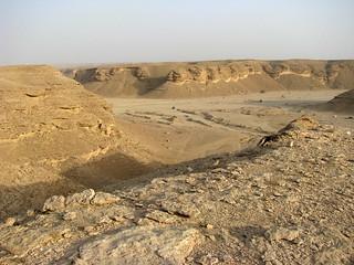 Late afternoon at Wadi Laban