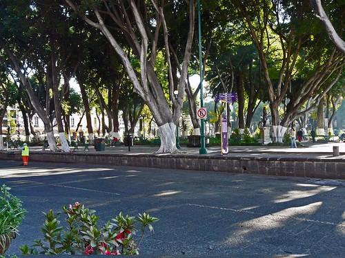 A20 Puebla cathedral