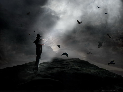 Crows Rock | by h.koppdelaney