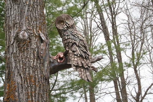 Great Grey Owl sculpture in a tree2