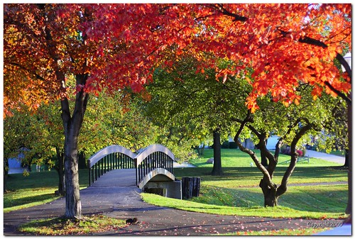 park bridge autumn trees ohio red green fall canon 50mm dof fairlawn croghan cotcpersonalfavorite 40d