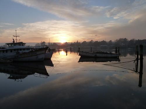 sunrise boats tasmania launceston tamarriver