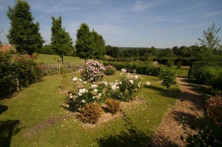 Secret Garden 2013 | by Hawkhurst CEP School Web Site Photos