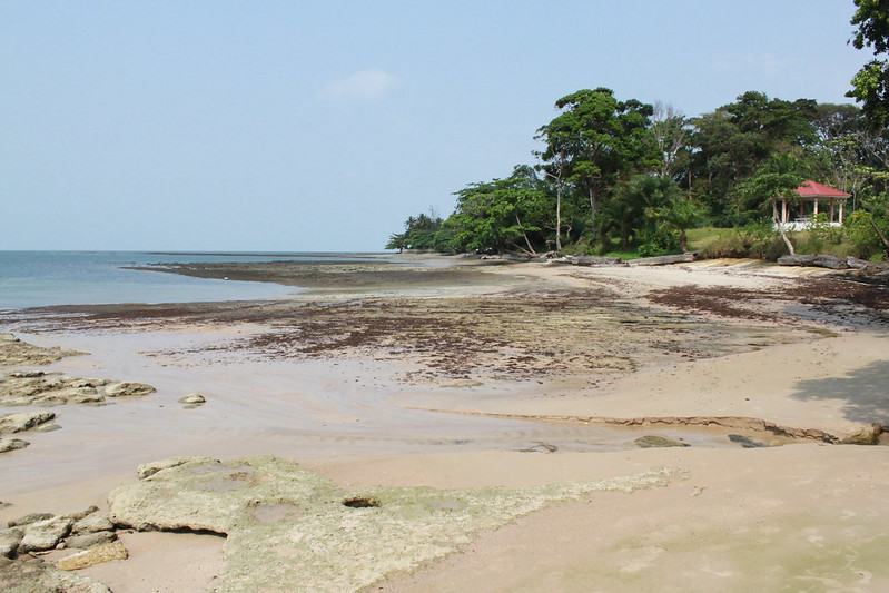 Beach Near Enef