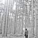 Wandering Soul 5 by John Durant