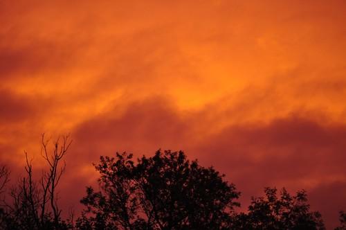 skies australia