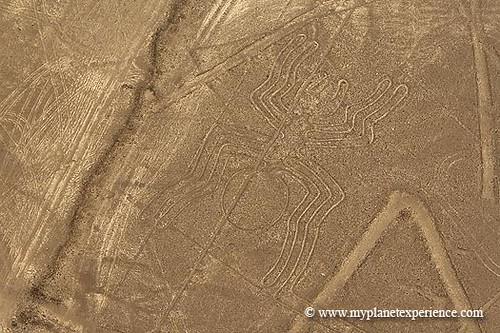 Peru experience : Nazca lines