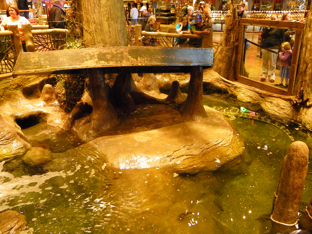 Bass Pro Shop - Springfield, MO | Albino Alligator enclosure… | Flickr