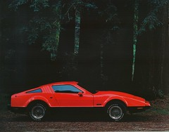 1975 Bricklin (Red)   by aldenjewell