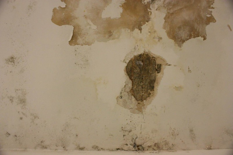 Crack and mould