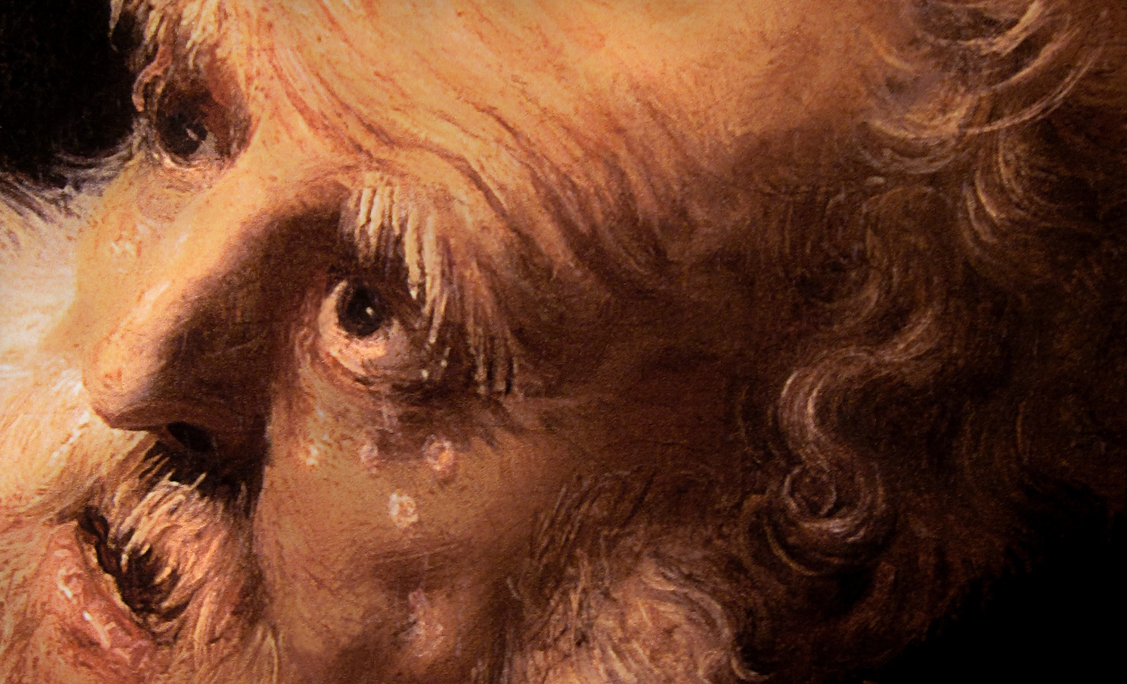 Rembrandt 025