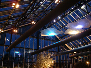 Jellyfish Ceiling at De Kas, with Olive Tree   by myravery