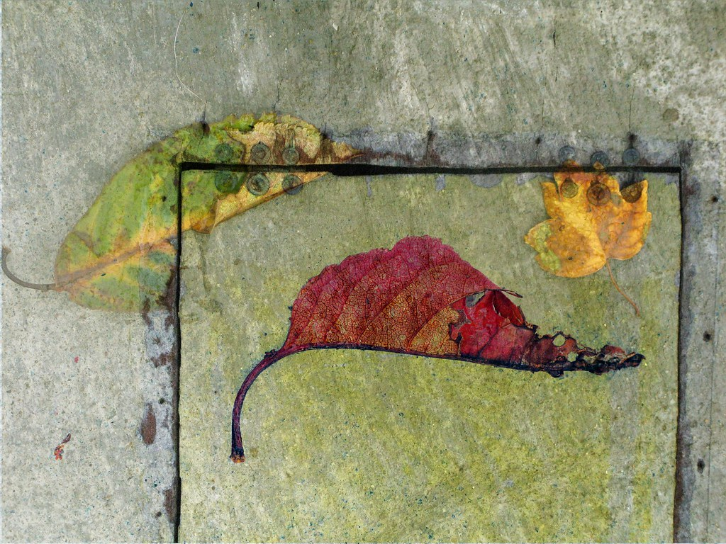 Sidewalk Leaves Decoupage