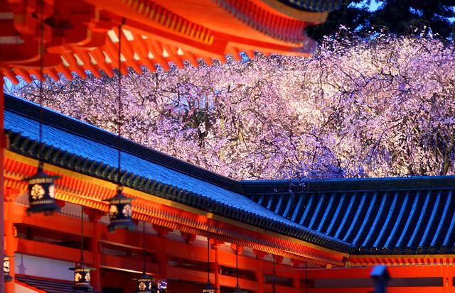 Heian Jingu Shrine in Spring Night.
