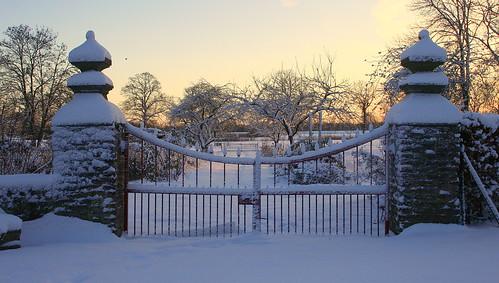 schnee winter snow netherlands sunrise gate sneeuw nederland horn limburg poort niederlande zonsopkomst