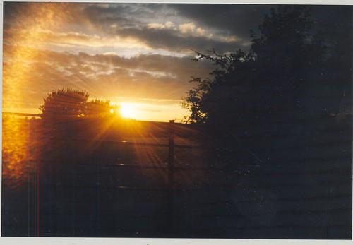 sunset summer film silhouette downs nikon silhouete silhoette silhoutte epsom silhouet silhuette d40 nikonistas nikonista