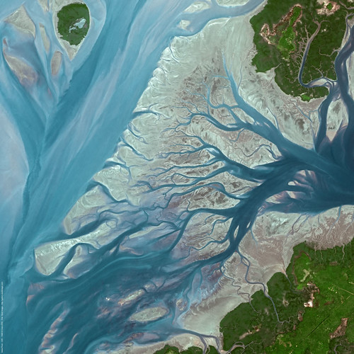 river delta cartography environment monitoring satelliteimage satelliteview guineabissau geba spotimage