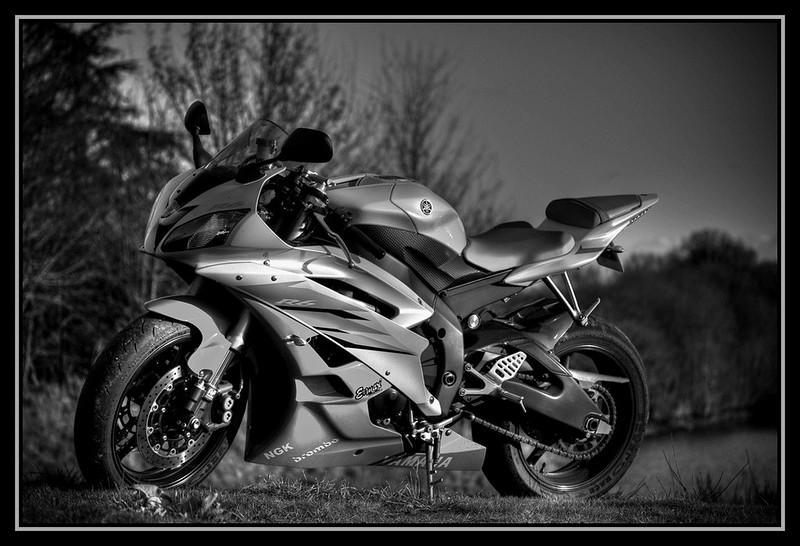 yamaha r6 noir et blanc