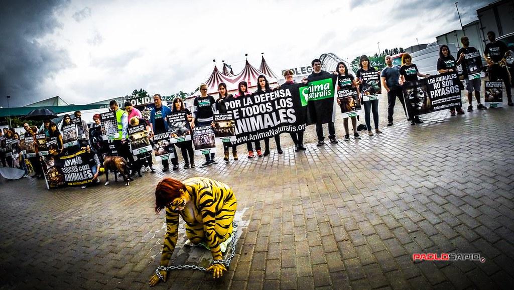 Protesta contra los circos con animales, Logroño, 2015