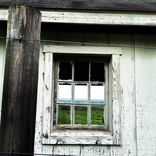 window vineyard va blenheim