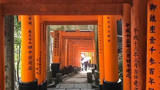 Photo of Day 8: Fushimi Inari Taisha   by Jon Curnow