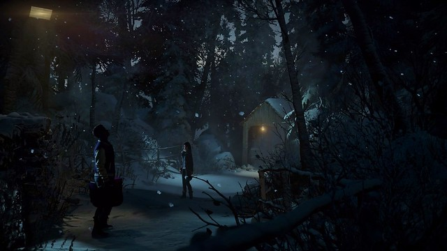 Until Dawn - Enjoy The Snow Sounds In The Night Forest